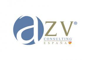 AZV CONSULTING